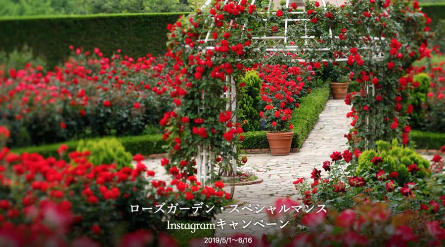 ガーデンウエディングの様子を「#オータニローズガーデン」で投稿【ホテルニューオータニ】